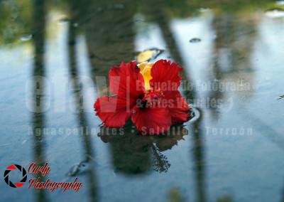 Cursos de Fotografía Profesional-83